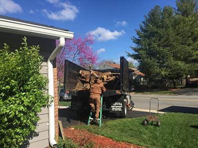 Haul Away Debris Service Springfield