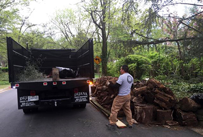 Yard Debris Removal Clifton